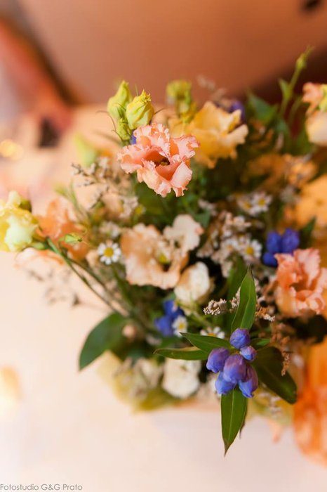 RISO & SORRISO Wedding and Events's profile image