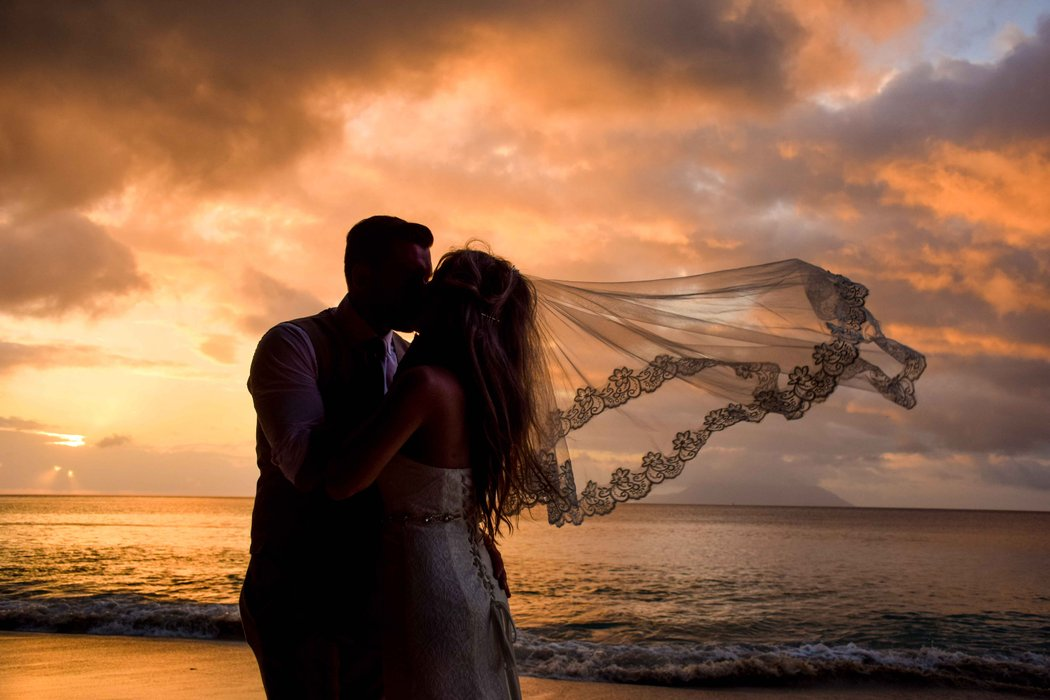 Seychelles Beach Wedding's profile image