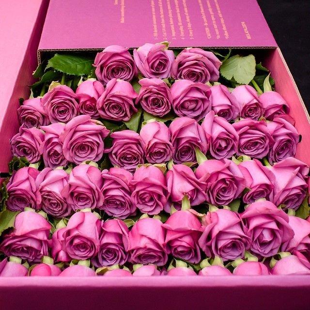 Riverside Bouquet Florist's profile image