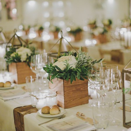 Social Butterfly Weddings and Events