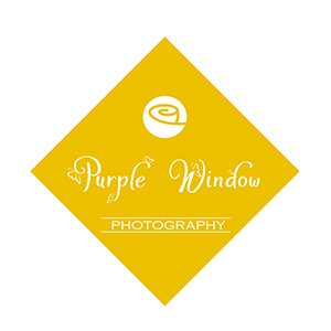 Purple Window Photography's profile image
