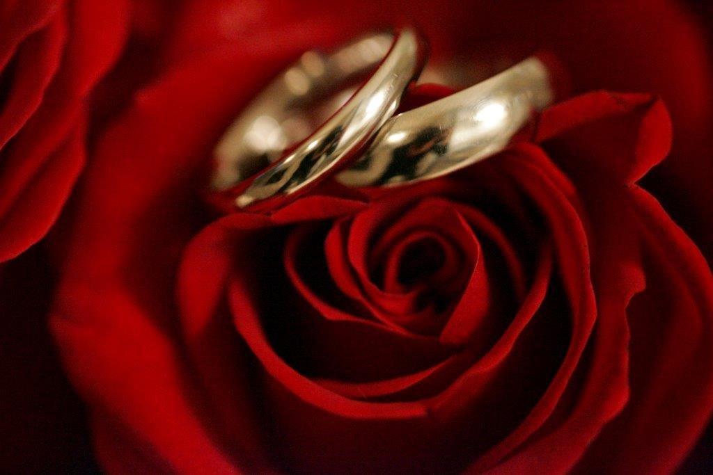 Wedding Salon's profile image