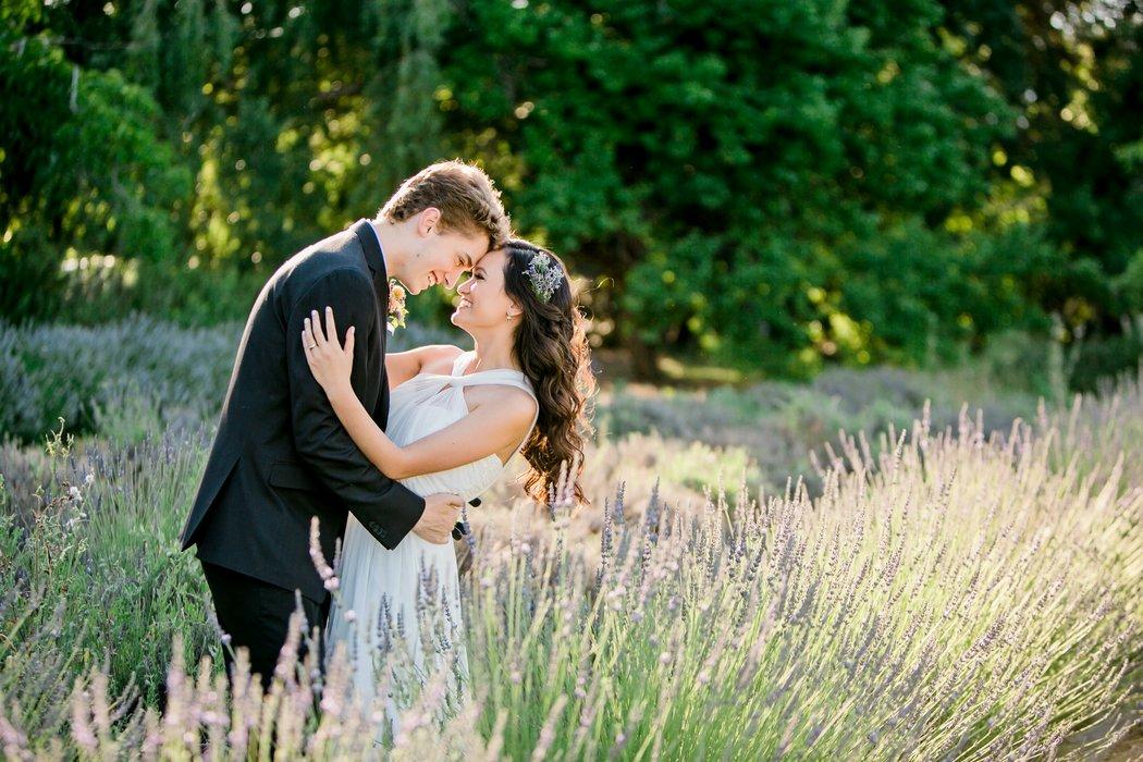 Cache Creek Lavender's profile image