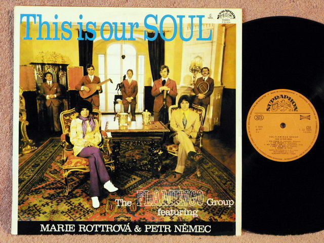 FLAMINGO GROUP, THE - This Is Our Soul - 33T