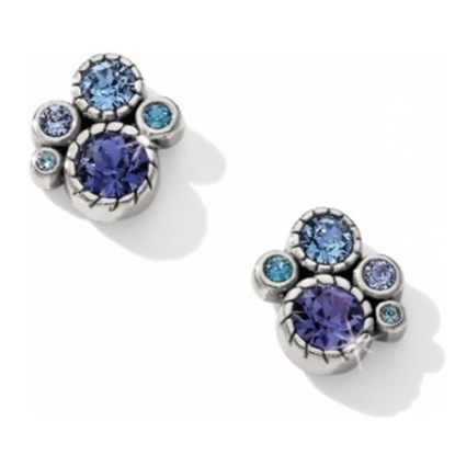 Picture of Brighton Halo Post Earrings - Silver/Tanzanite