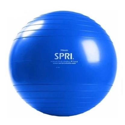 Picture of SPRI 75cm Professional Plus Xercise Ball Kit