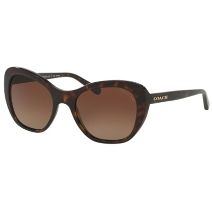 Picture of Coach Cat-Eye Polarized Sunglasses - Tortoise/Brown Gradient