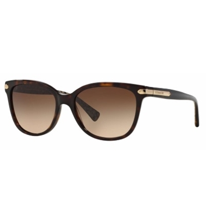 Picture of Coach Cat-Eye Sunglasses - Dark Brown/Brown Gradient
