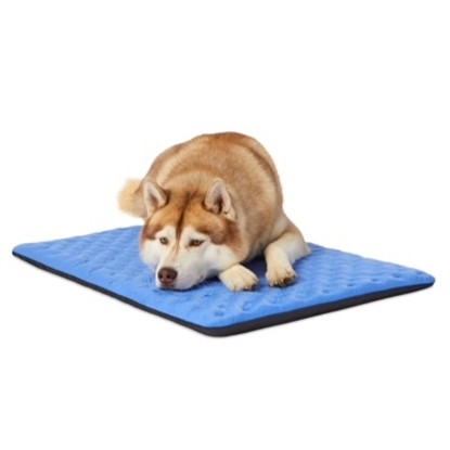 Picture of Enchanted Home Pet OrthoCool™ Luxury Cooling Cushion