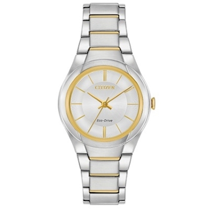 Picture of Citizen Eco-Drive Paradigm Two-Tone Watch
