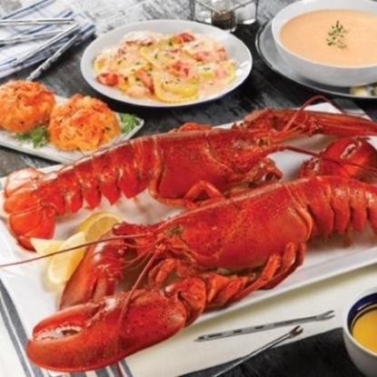 Picture of Lobstergram Lobsterpalooza Gram