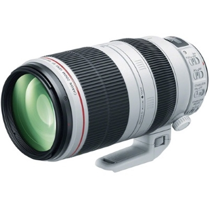 Picture of Canon EF 100-400mm f/4.5-5.6L IS II USM Lens