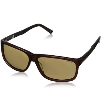 Picture of Polaroid X Polarized Sunglasses - Crystal Brown/Brown