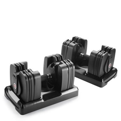 Picture of Bowflex® ST560 Dumbbells and Stand