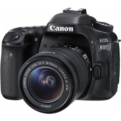 Picture of Canon 24.2MP Digital SLR Camera with 18-55mm Lens