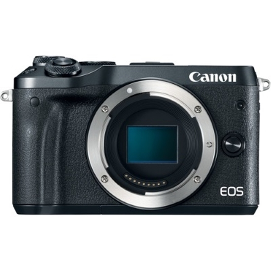 Picture of Canon 24.2MP Digital Camera Body Only with 8GB SD Card