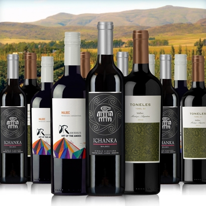 Picture of Malbec 12-Pack