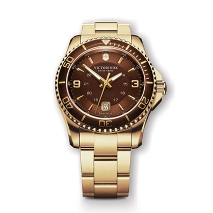 Picture of Victorinox Swiss Army Maverick GS Watch with Brown Dial