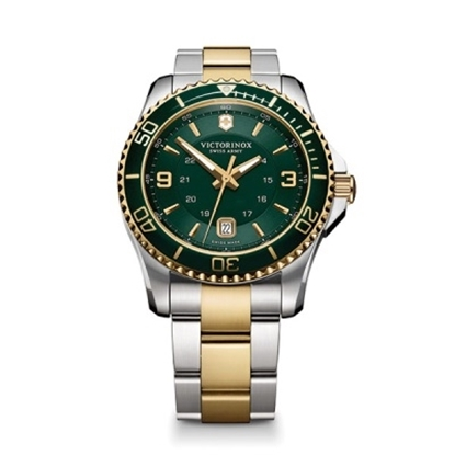 Picture of Victorinox Swiss Army Maverick GS Two-Tone Watch
