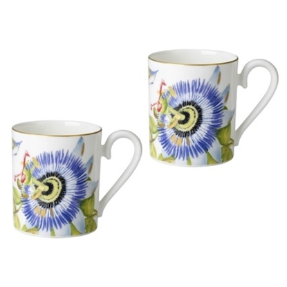 Picture of Villeroy & Boch Amazonia Mugs - Set of 2