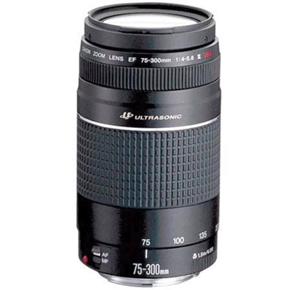 Picture of Canon EF 75-300mm f/4.0-5.6 III Telephoto Lens