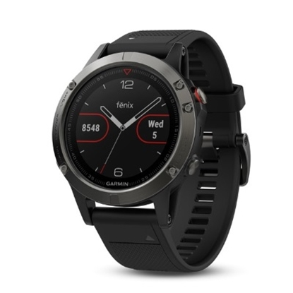 Picture of Garmin fenix® 5 Multisport GPS Watch - Slate Gray/Black