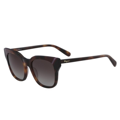Picture of Salvatore Ferragamo Colorblock Sunglasses - Tortoise