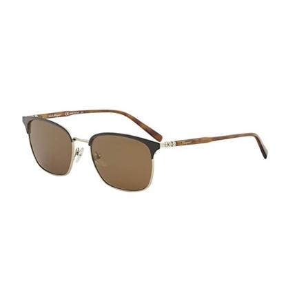 Picture of Salvatore Ferragamo Sunglasses