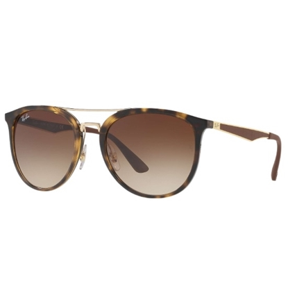 Picture of Ray-Bay® Double Bridge Sunglasses- Tortoise/Brown Gradient