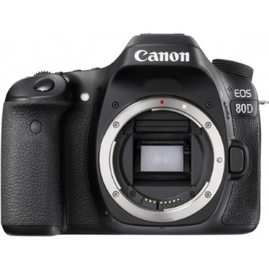 Picture of Canon 24.2MP Digital SLR Camera - Body Only