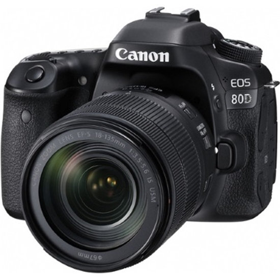 Picture of Canon 24.2MP Digital SLR Camera with 18-135mm Lens