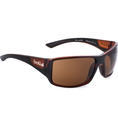 Picture of Bolle Tigersnake TLB Sunglasses - Shiny Black