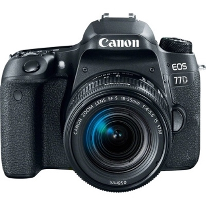 Picture of Canon 24.2MP Digital SLR with 18-55mm Lens & 8GB SD Card