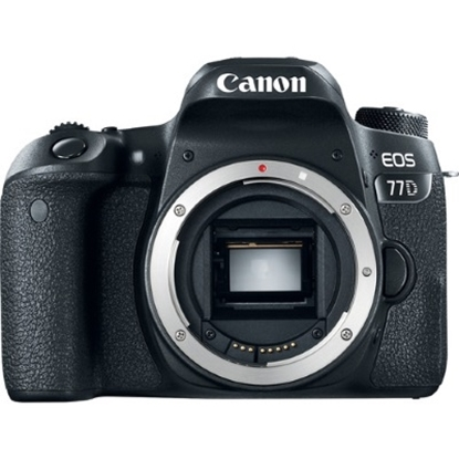 Picture of Canon 24.2MP Digital SLR Camera with 8GB SD Card - Body Only