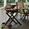 Picture of Cuisinart® All Foods Roll-Away Gas Grill