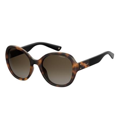 Picture of Polaroid Oval Sunglasses - Dark Havana/Brown Gradient Lens