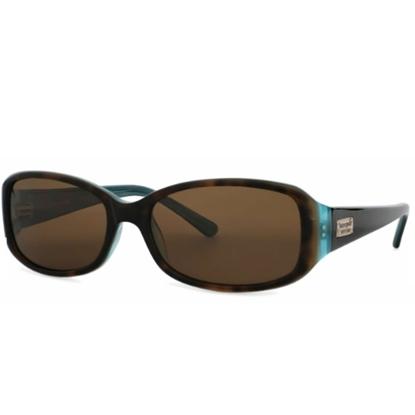 Picture of Kate Spade Paxton Sunglasses - Tortoise Aqua/Brown Polarized