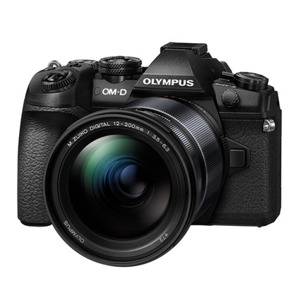 Picture of Olympus 20.4MP Mirrorless Camera Telephoto Zoom Kit