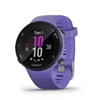 Picture of Garmin Forerunner® 45S