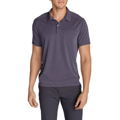 Picture of Eddie Bauer Men's Regular Short Sleeve Polo
