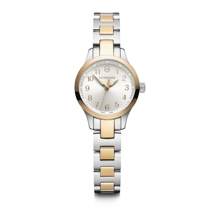 Picture of Victorinox Alliance XS Two-Tone Watch with Silver Dial