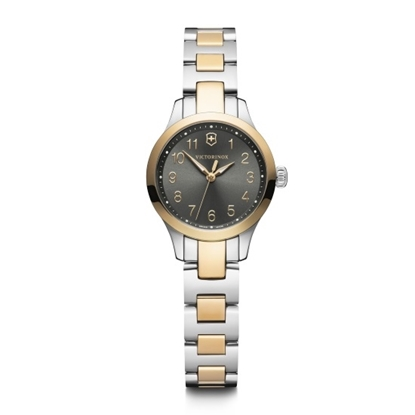 Picture of Victorinox Alliance XS Two-Tone Watch with Black Dial