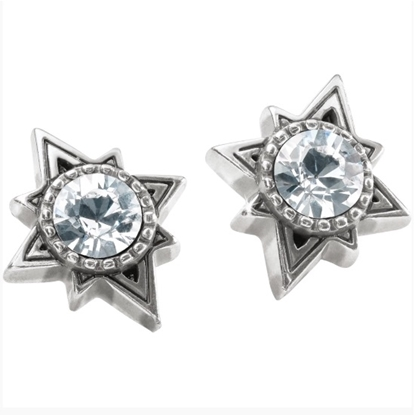 Picture of Brighton Halo Swing Post Earrings