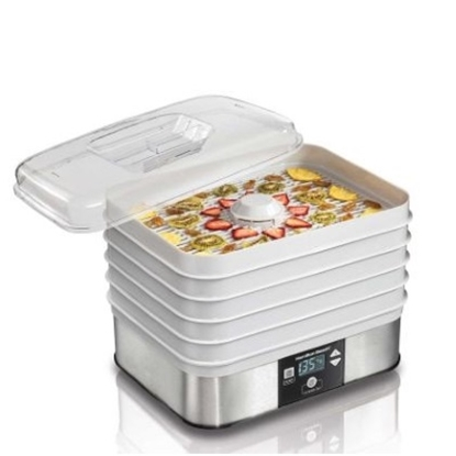 Picture of Hamilton Beach® Food Dehydrator