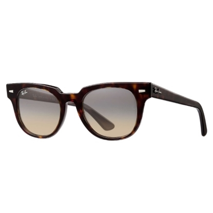 Picture of Ray-Ban® Metor Classic with Tortoise Frame