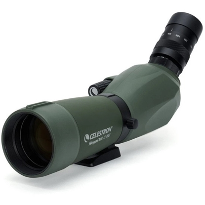 Picture of Celestron Regal M2 65ED Spotting Scope