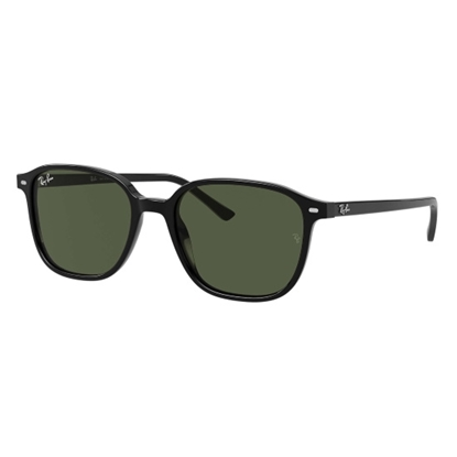 Picture of Ray-Ban® Leonard Sunglasses - Black/Green
