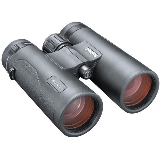 Picture of Bushnell 10x42 Engage DX Binocular