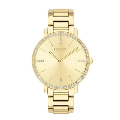 Picture of Coach Audrey Gold-Tone Watch