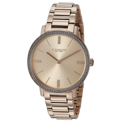 Picture of Coach Audrey Carnation Gold-Tone Watch